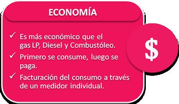 nesim-issa-tafich-economia